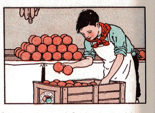 [boy stacking oranges]